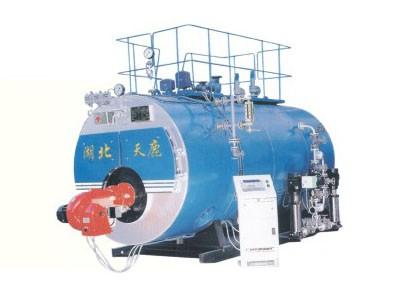 WNS系列燃油气万博体育manbetx官网网页版